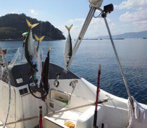 釣り日和♪